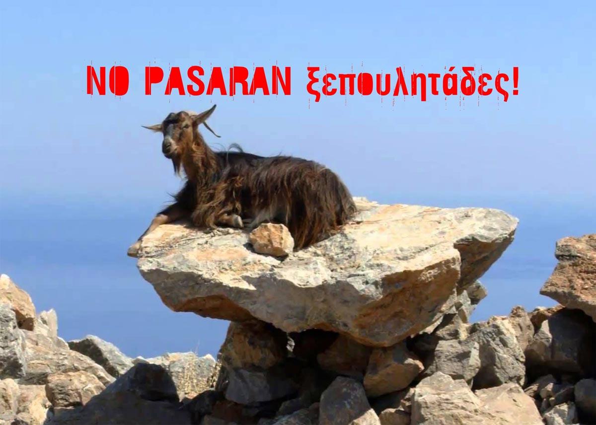 no-pasaran-1