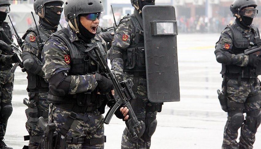 police-commandos