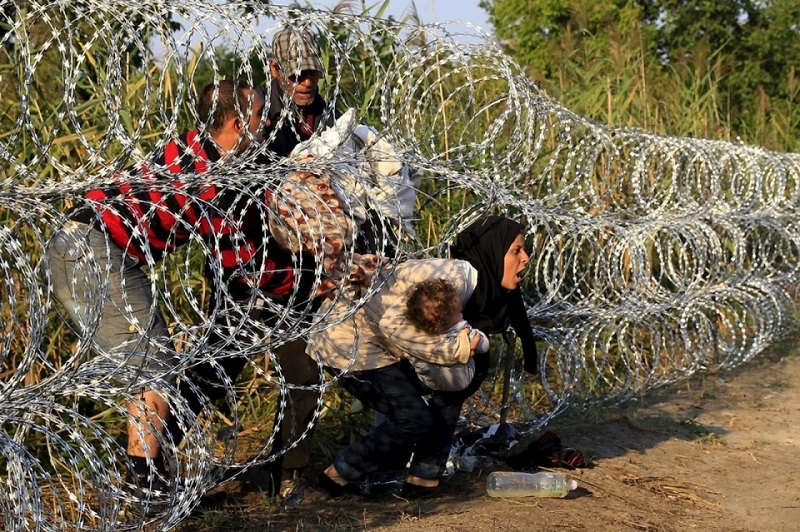 syrian-refugees-wire