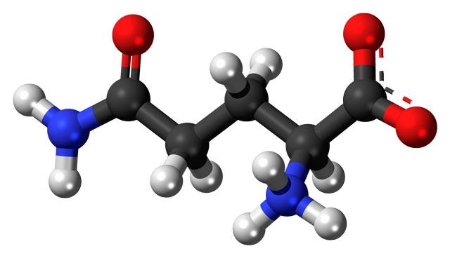 L-Glutamine-zwitterion-3D-balls-1