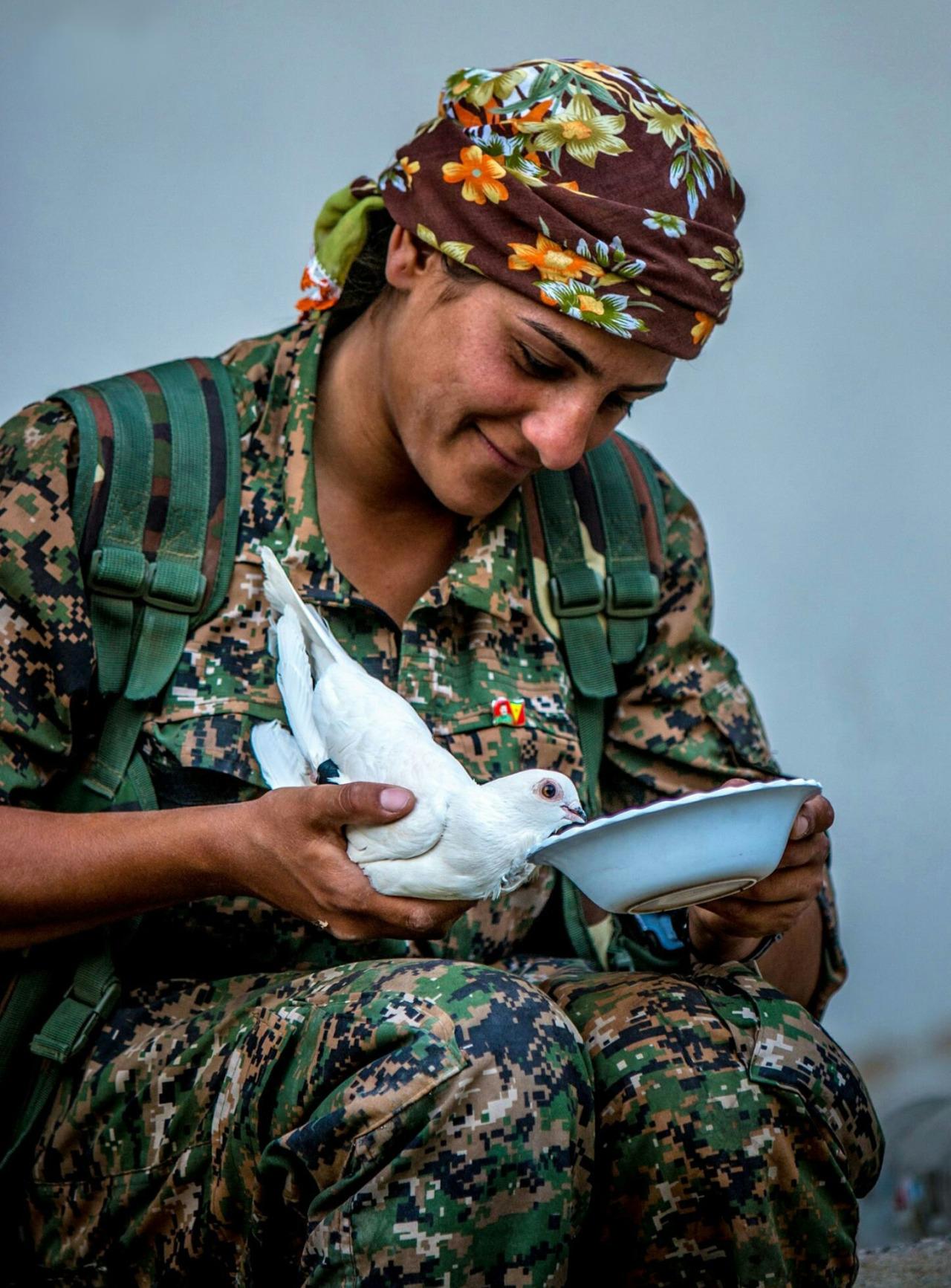 kurdish 07