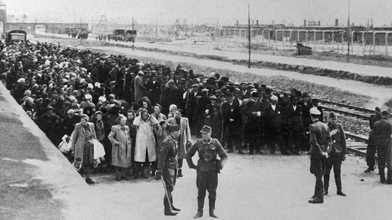 Auschwitz-4