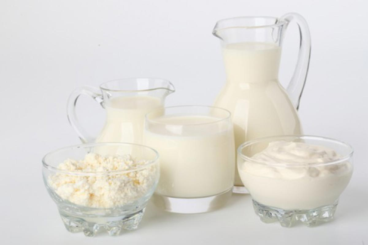 Dairy--Product-2
